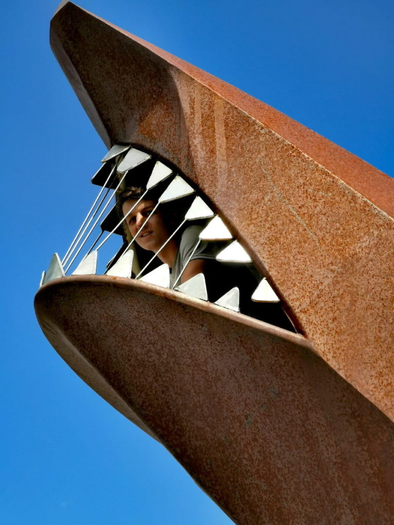 Ziel einer Krippenstein Wanderung: Der Dachstein Hai